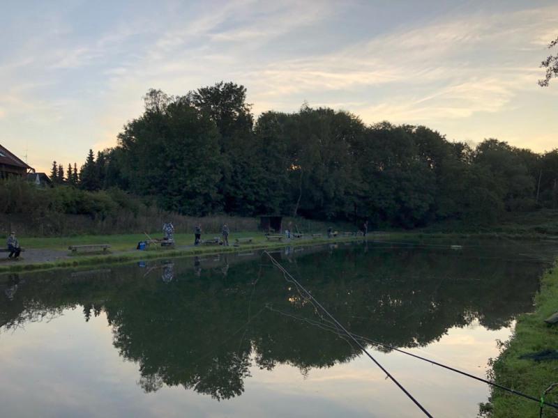 Blick auf Teich 5